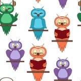 与五颜六色的猫头鹰的无缝的样式 免版税库存照片