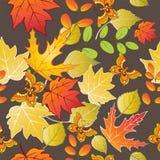 与五颜六色的秋叶和蝴蝶的无缝的样式 也corel凹道例证向量 皇族释放例证