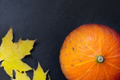 与五颜六色的秋叶的南瓜 库存图片