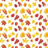 与五颜六色的秋叶的无缝的模式 免版税图库摄影