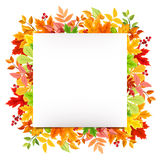 与五颜六色的秋叶的白色卡片 向量EPS-10 图库摄影