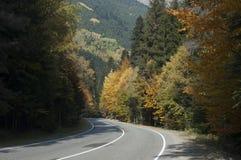 与五颜六色的秋天森林的令人敬畏的神色有一座被铺的山的r 库存图片