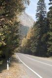 与五颜六色的秋天森林的令人敬畏的神色有一座被铺的山的r 免版税图库摄影