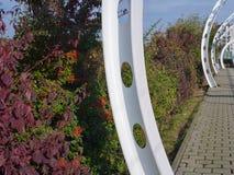 与五颜六色的秋天灌木的白色结构 免版税图库摄影