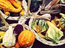 与五颜六色的秋天菜的篮子 免版税库存照片