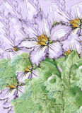 与五颜六色的美丽的花的水彩抽象花卉背景 库存图片