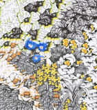 与五颜六色的美丽的花的水彩抽象花卉背景 免版税库存图片