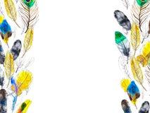 与五颜六色的羽毛的水彩框架在白色背景 库存例证