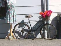 与五颜六色的花服的时装模特乘有花篮子的自行车  库存图片