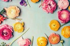 与五颜六色的花的可爱的花卉框架在轻的葡萄酒破旧的别致的背景,顶视图 库存图片