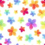 与五颜六色的花的无缝的样式。 库存图片