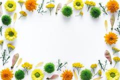 与五颜六色的花的框架在白色背景 库存照片