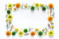 与五颜六色的花的框架 库存图片
