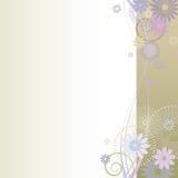 与五颜六色的花的美好的花卉背景…背景 免版税库存图片