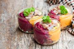 与五颜六色的菜的鲱鱼沙拉在小玻璃瓶子 图库摄影