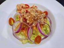 与五颜六色的菜选矿的辣金枪鱼色拉在白色板材 库存照片