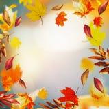 与五颜六色的落的叶子和bokeh的秋天背景,秋天自然在庭院里或公园,框架 图库摄影