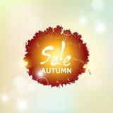 与五颜六色的透亮叶子的秋天样式 销售 库存照片