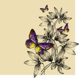 与五颜六色的蝴蝶和snowdrops的花卉背景,手 免版税库存图片