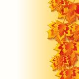 与五颜六色的3d槭树叶子的秋天背景 图库摄影