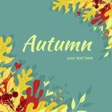与五颜六色红色的秋天框架,桔子离开 库存照片