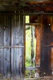 与亚斯本树的土气被放弃的客舱在门道入口 库存图片