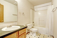 与亚麻油地毡地板的简单的卫生间内部 库存照片
