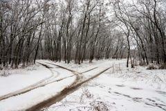 与交叉路的冬天风景 免版税库存图片