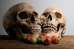 与人的头骨和新鲜的樱桃的静物画摄影在木桌上的收割期有墙壁背景 图库摄影