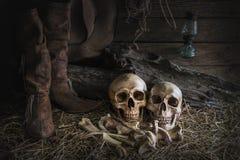 与人的头骨的静物画在谷仓背景中 免版税库存照片