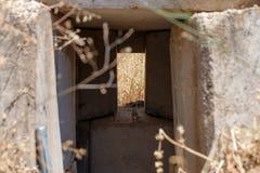 与从最后的审判日留在了赎罪日战争战争在戈兰高地以色列的发射孔的弹头 库存照片