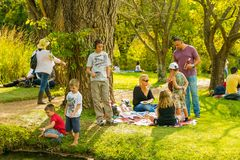 与他们的使用在池塘的孩子的一个年轻家庭 图库摄影