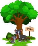 与他逗人喜爱的儿子的黑豹 免版税库存图片