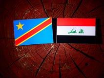 与伊拉克旗子的刚果民主共和国旗子在树 库存图片