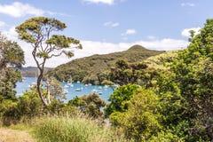 与休息的游艇的晴朗的海湾 免版税库存照片