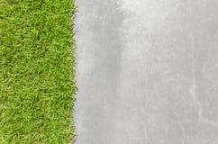 与优美的水泥表面的新鲜的绿草 免版税库存照片