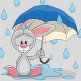 与伞的兔宝宝 免版税库存图片