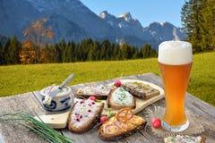 与传播的快餐在巴法力亚阿尔卑斯 图库摄影