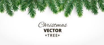 与传染媒介圣诞树的水平的横幅分支和文本的空间 库存例证