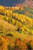 与传统秸杆屋顶房子的美好的秋天风景Ap的 库存照片