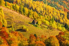 与传统秸杆屋顶房子的美好的秋天风景Ap的 免版税库存照片