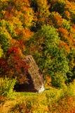 与传统秸杆屋顶房子的美好的秋天风景Ap的 免版税图库摄影