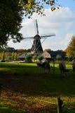 与传统荷兰五谷风车的风景 免版税图库摄影