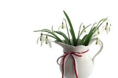 与传统红色白色绳子的Snowdrops 图库摄影