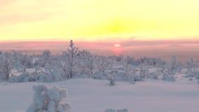与低植被的一个多雪的平原在朝阳的背景 股票录像