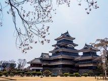 与佐仓开花,马塔莫罗斯,日本4的马塔莫罗斯城堡 库存照片