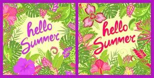 与你好夏天字法、热带叶子、木槿和其他异乎寻常的花的夏天招呼的花卉五颜六色的卡片袋子的, 皇族释放例证