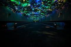 与使五颜六色的玻璃天花板内部惊奇的水平的自动扶梯 库存图片