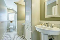 与侧面墙修剪的卫生间内部 库存图片