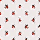 与俏丽的水彩瓢虫的无缝的传染媒介背景 免版税图库摄影